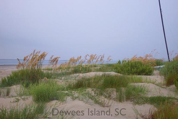 Dewees Island has 2.5 miles of pristine beach